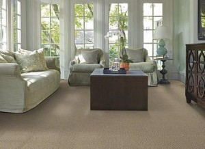 Capture-shaw-carpet