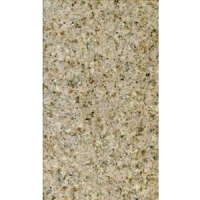 Desert Gold 18x31 Granite Mini Slabs