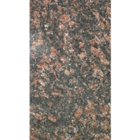Tan Brown 18x31 Granite Mini Slabs