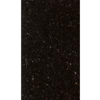 Black Galaxy 18x31 Granite Mini Slabs