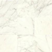 Calacatta Honed 12x12 Marble